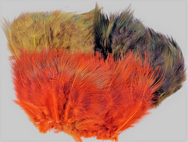Pheasant – Wapsi Fly